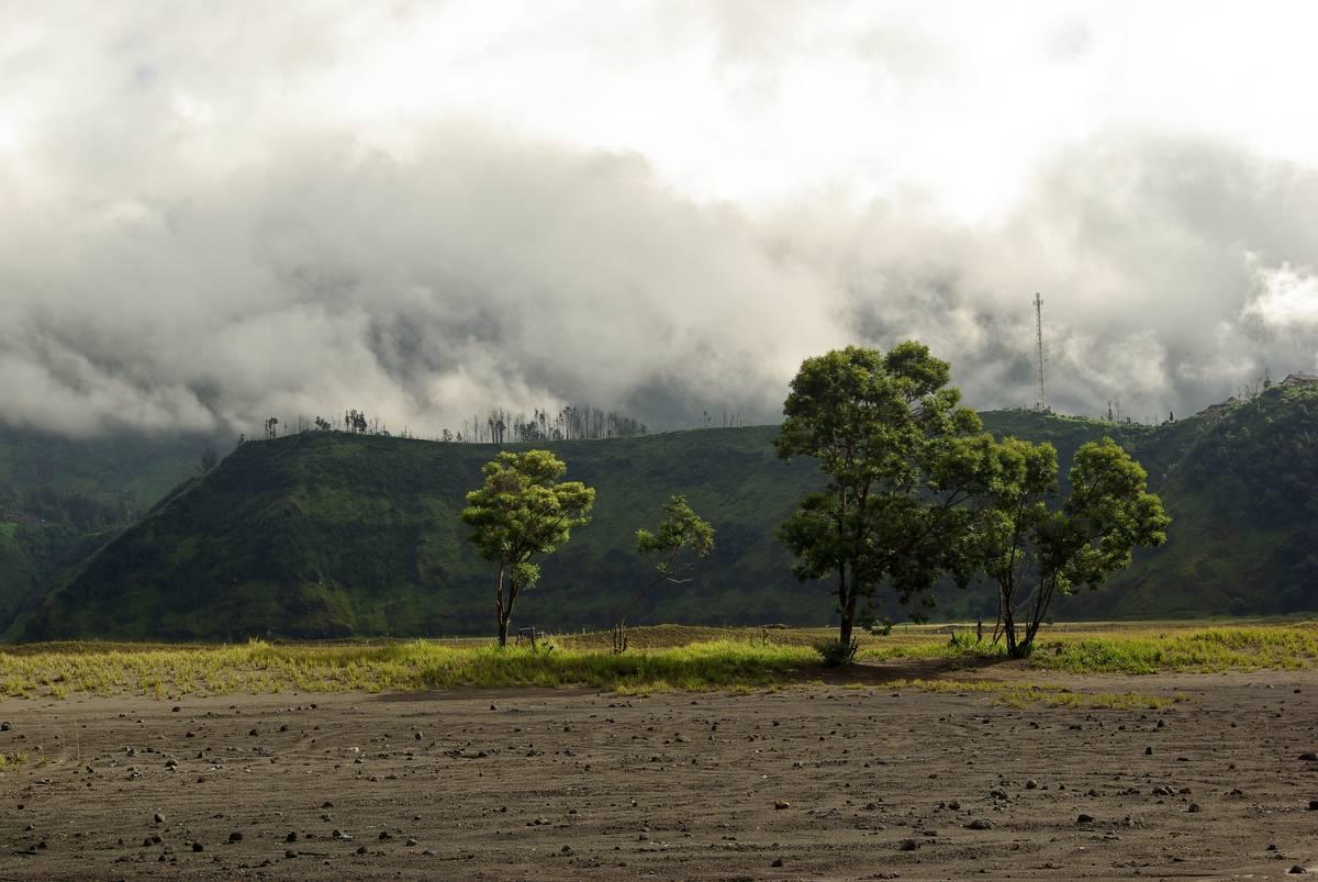 Кальдера, где расположен вулкан Бромо