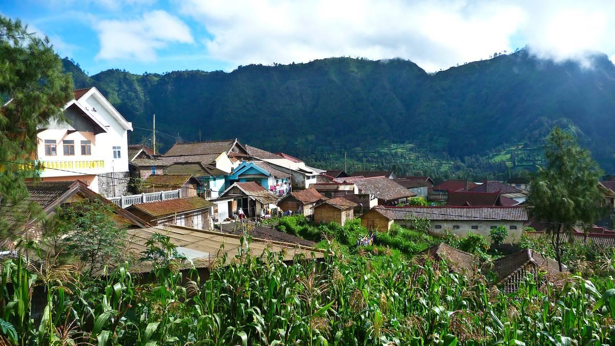 Деревня Чеморо Лаванг около вулкана Бромо