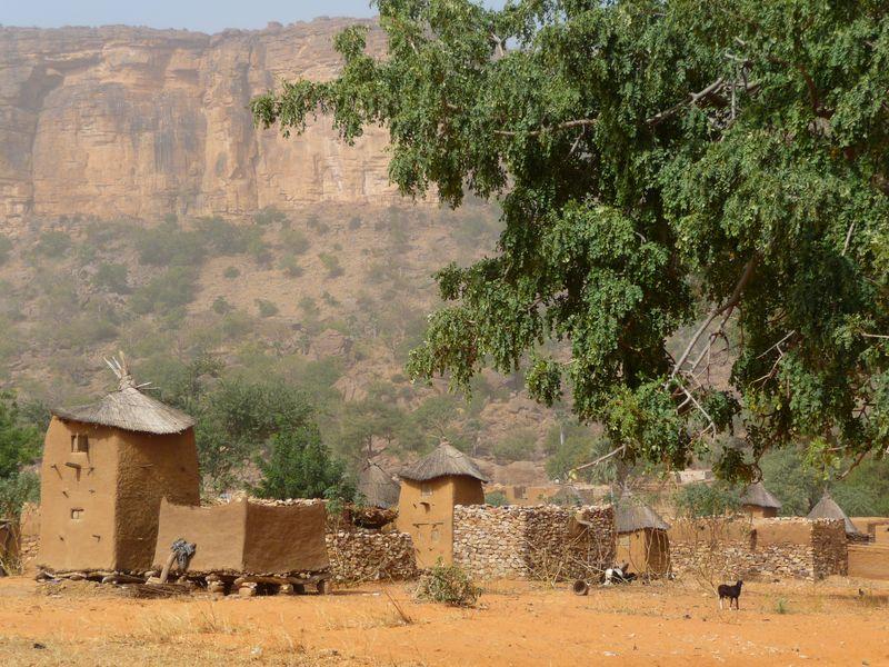 В маленьких домиках с соломенными крышами догоны хранят зерно