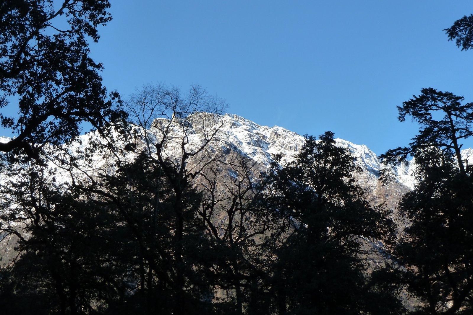 Danaque - Pisang