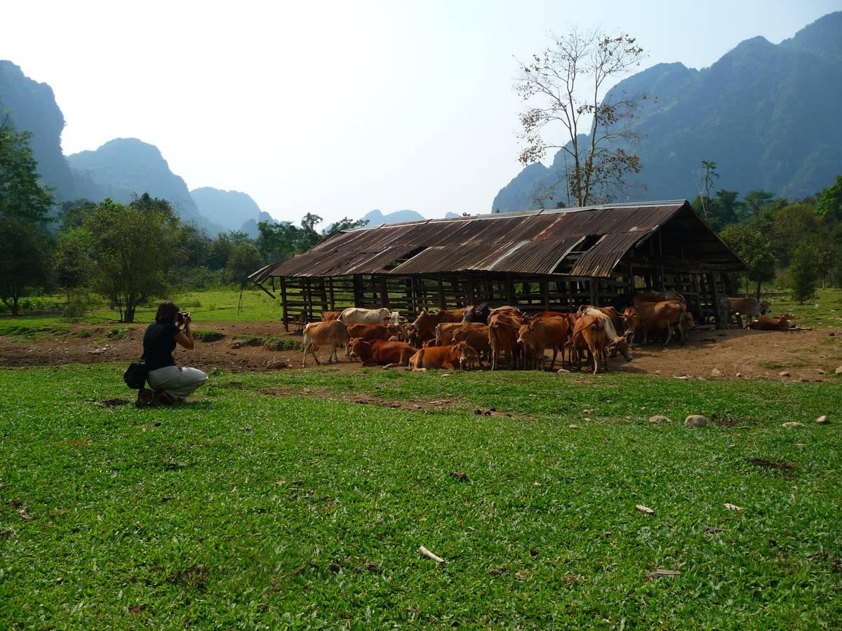 Заметки из Лаоса